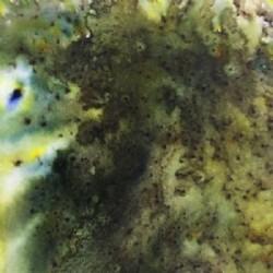 Santoros Mirabelle - Deco Mache papir - Burnt Paper
